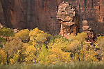 The Pulpit in autumn at Zion National Park, Utah