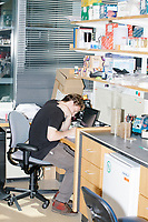 Gabriel Filsinger, a 4th-year graduate student, works in George Church's Lab in the New Research Building at Harvard Medical School's Department of Genetics in Boston, Massachusetts, USA, on Tues., Sept. 5, 2017. Filsinger said he's working on an alternative genome editing system called lambda red recombination. Currently, Filsinger's method only works in E. Coli, but he's trying to get it to work on other genomes.