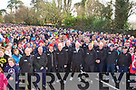 Members of the 1970's and 80's Kerry football team who helped Paudie Mahony start the Operation transformation walk in Killarney on Saturday