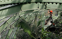 Tropical Rainforest Glasshouse (formerly Le Jardin d'Hiver or Winter Gardens), 1936, René Berger, Jardin des Plantes, Museum National d'Histoire Naturelle, Paris, France. Detail showing a worker hanging from the metal structure of the roof of the Art Deco style glasshouse whilst installing an atomiser to ensure that the atmosphere has the correct humidity for the luxuriant tropical foliage.