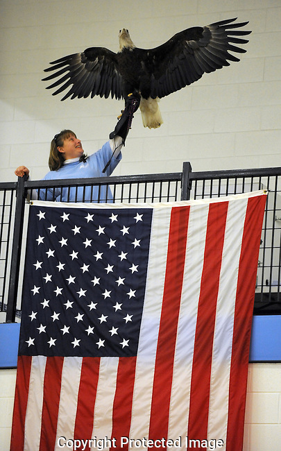 Skyline High School's bald eagle mascot, courtesy of the Leslie Science Center, spreads its wings as it's held high above the American flag during fourth quarter action of Skyline's 54-52 win over Pioneer, Friday, February 11th at Skyline High School. .Lon Horwedel | AnnArbor.com