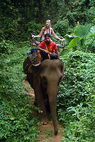 A tourist enjoying an Asian Elephant trek through the jungle.
