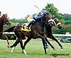 Nokaze winning at Delaware Park on 9/21/13