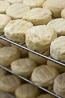 Europe/France/Rhône-Alpes/26/Drôme/Dieulefit: Chez Patrick Vinaski producteur de picodons - fromages jeunes à l'affinage
