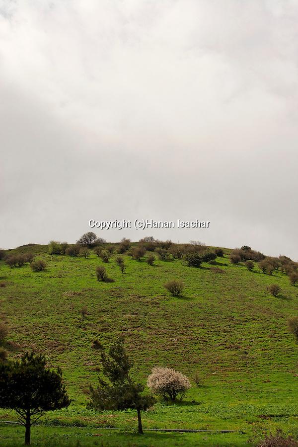 The Golan Heights. Mount Baron