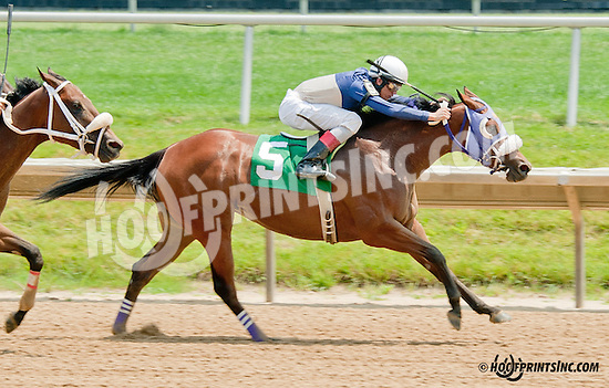 Hailey's Star winning at Delaware Park on 6/26/13