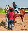 A Ladys Man winning at Delaware Park on 5/29/13