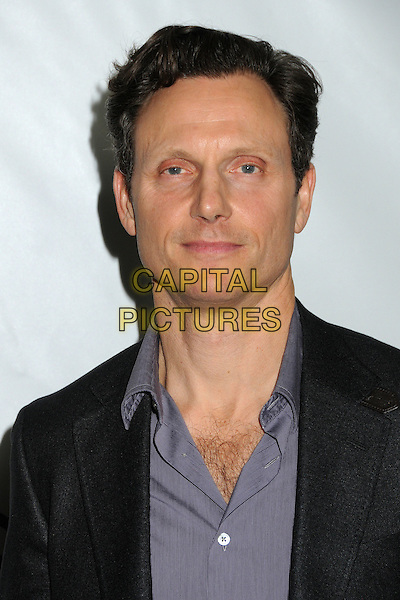 Tony Goldwyn.Disney ABC 2012 TCA Winter Press Tour held at the Langham Huntington Hotel, Pasadena, California, USA..January 10th, 2012.headshot portrait black purple shirt .CAP/ADM/BP.©Byron Purvis/AdMedia/Capital Pictures.