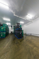 Brassica cold store with humidification - Lincolnshire, July