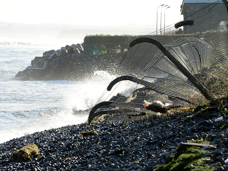 Damage caused by the high tide to the fence surrounding the field where Laytown races are held. Photo: Colin Bell/pressphotos.ie