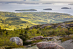 Cadillac Mountain at sunrise, Acadia National Park, Downeast, ME