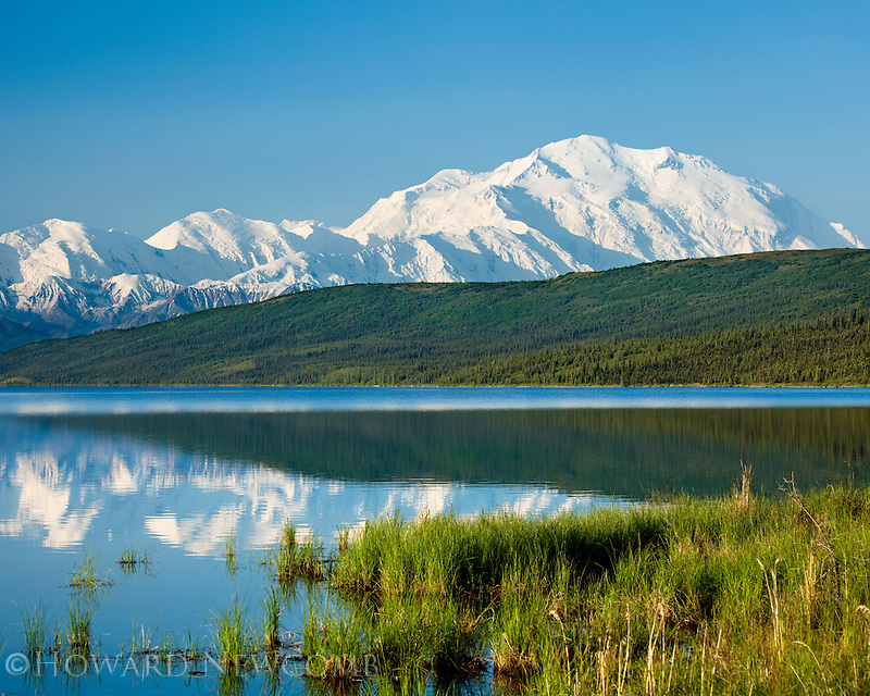 Mount McKinley (Denali) and the grassy shore of Wonder Lake on a clear and calm summer morning in Denali National Park.