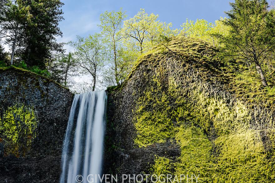 Latourell Falls, Columbia Gorge National Recreation Area, Oregon