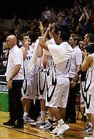 Tall Blacks captain Kirk Penney (second left) celebrates with his team during the International basketball match between the NZ Tall Blacks and Australian Boomers at TSB Bank Arena, Wellington, New Zealand on 25 August 2009. Photo: Dave Lintott / lintottphoto.co.nz