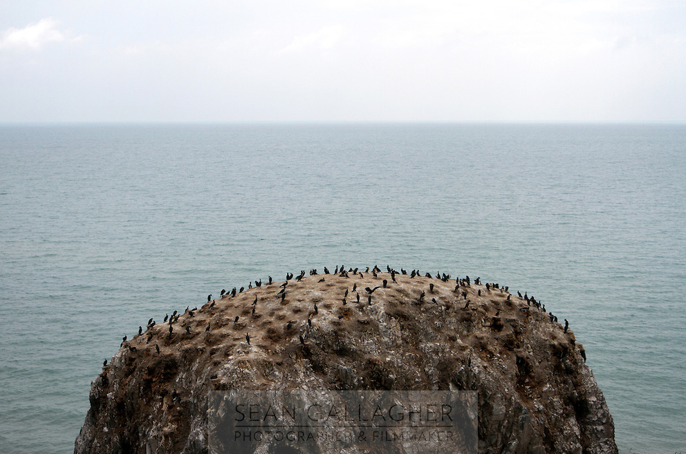 'Bird Island', a famous tourist spot at Qinghai Lake. Qinghai Lake, China's largest inland body of water lies at over 3000m on the Qinghai-Tibetan Plateau. The lake has been shrinking in recent decades, as a result of increased water-usage for local agriculture. Qinghai Province. The lake is an important stop-over point for many migrating birds throughout Asia. China. 2010