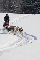 Dogsledding in Wyoming, a guided tour in at Jackson Hole's Togwotte Pass
