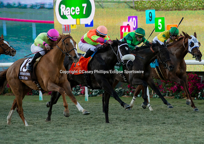 December 2 2018:  #13 Uni, ridden by Joel Rosario, passes #7 Daddy Is A Legend, ridden by Manuel Franco, #5 Quidura, ridden by Jose Ortiz, and #9 Vasilika, ridden by Flavien Prat,in the stretch of the Matriarch Stakes (Grade l), on December 2, 2018, at Del Mar Thoroughbred Club in Del Mar, CA(Photo by Casey Phillips/Eclipse Sportswire/CSM