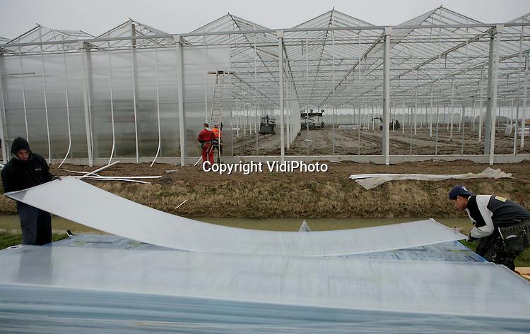 Foto: VidiPhoto..BEMMEL - Orchideeënkwekerij De Molenhoek uit Horssen bouwt in het tuinbouwgebied Bergerden in Bemmel een gloednieuwe kas van 1,7 ha. In eerste instantie betreft het een uitbreiding. Door de dikke laag modder in de kas moet er met zware rupsvoertuigen gewerkt worden. De vraag naar orchideeën neemt nog steeds toe. Iedere drie jaar verdubbelt de Nederlandse productie. De meest verhandelde plant op de veiling in Aalsmeer is vooral in Duitsland razend populair. Zeker 90 procent van de productie gaat daar naar toe. De kracht van de orchidee is zijn lange bloeitijd. De nieuwe kas moet in juli klaar zijn. Bouwer is Gakoo uit Weteringen. RPO uit Rotterdam plaatst het glas.