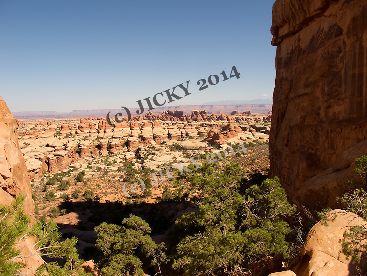 The Needles - Cedar Mesa Sandstone formations at the Elephant Hill trail