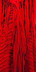 Red Silk 02 - Detail of layered red silk dress.