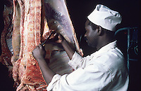 Veterinarian at work in slaughterhouse