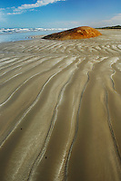 Beach, Coorong National Park, South Australia, Australia