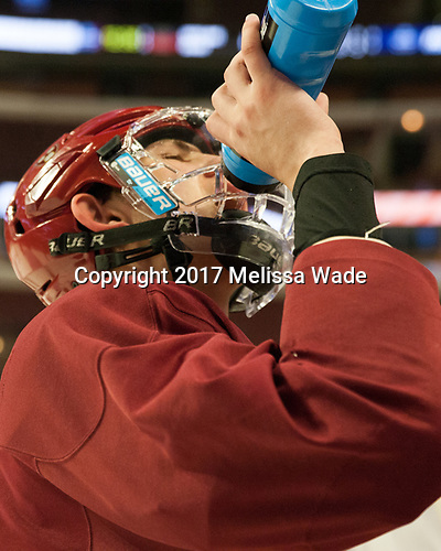 John Marino (Harvard - 12) - The Harvard University Crimson practiced at the United Center on Wednesday, April 5, 2017, in Chicago, Illinois.