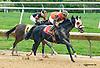 Aragvi winning at Delaware Park on 9/30/15