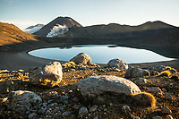 Sunrise on tussock, volcanic rocks and Blue Lake with volcano Mount Ngaruhoe 2287m in background, Tongariro National Park, Central Plateau, North Island, UNESCO World Heritage Area, New Zealand, NZ
