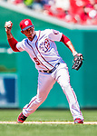 30 July 2017: Washington Nationals infielder Adrian Sanchez gets the third out in the third inning against the Colorado Rockies at Nationals Park in Washington, DC. The Rockies defeated the Nationals 10-6 in the second game of their 3-game weekend series. Mandatory Credit: Ed Wolfstein Photo *** RAW (NEF) Image File Available ***