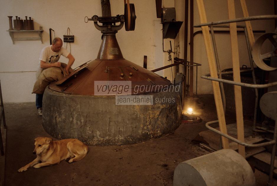 Europe/Belgique/Région de Bruxelles-Capitale/Bruxelles : Brasserie Gueuze Cantillon - Houblonnage