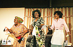 Dinner At Grandma's starring Debbi Blackwell-Cook as Grandma Gracie - an original play with music written by Evern Gillard-Randolf with its opening night and reception on April 29, 2010 at The Salvation Army, New York, NY. (Photo by Sue Coflin/Max Photos)