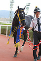 Horse Racing: Sirius Stakes