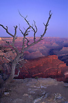 Dawn light over the Grand Canyon from Pima Point, South Rim, Grand Canyon National Park, ARIZONA