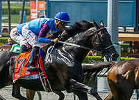 "ARCADIA, CA. JUNE 3: #7 Bolo ridden by Corey Nakatani in the Shoemaker Mile (Grade l), Breeders' Cup ""Win and You're In"" race on June 3, 2017, at Santa Anita Park in Arcadia, CA. (Photo by Casey Phillips/Eclipse Sportswire/Getty Images)"
