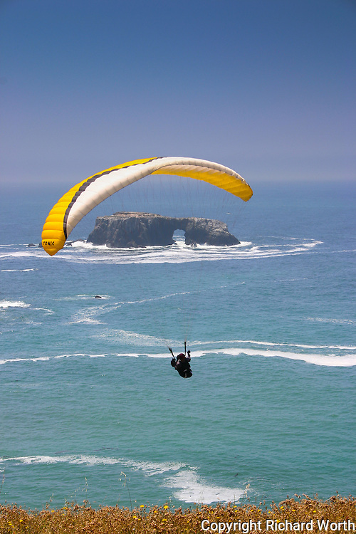 Paraglider Timothy Barnes prepared his paraglider, carefully nursed it to life, then stepped over the edge and glided down to the beach at Goat Rock State Beach on the California coast.