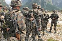 - MLF, European Multinational Land Force, Italian, Slovenian and Hungarian Combat Group; soldiers of Slovenian army....- MLF, Forza Europea Multinazionale di Terra, Gruppo da Combattimento Italo Sloveno Ungherese; militari dell'esercito sloveno