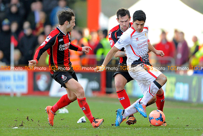 Luis Suarez of Liverpool holds off Harry Arter of AFC Bournemouth and Charlie Daniels of AFC Bournemouth- AFC Bournemouth vs Liverpool - FA Cup 4th Round Football at the Goldsands Stadium, Bournemouth, Dorset - 25/01/14 - MANDATORY CREDIT: Denis Murphy/TGSPHOTO - Self billing applies where appropriate - 0845 094 6026 - contact@tgsphoto.co.uk - NO UNPAID USE
