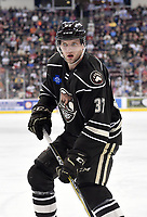 HERSHEY, PA - JANUARY 05: Hershey Bears defenseman Joey Leach (37) watches the play during the Grand Rapids Griffins vs. Hershey Bears AHL game at the Giant Center in Hershey, PA. (Photo by Randy Litzinger/Icon Sportswire)