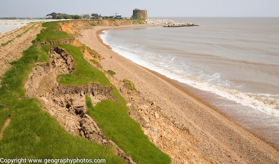 Rapid coastal erosion of crumbling soft cliffs at East lane, Bawdsey, Suffolk, England, 2012