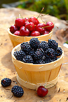 punet of fresh picked orgainic blackberries and cherries