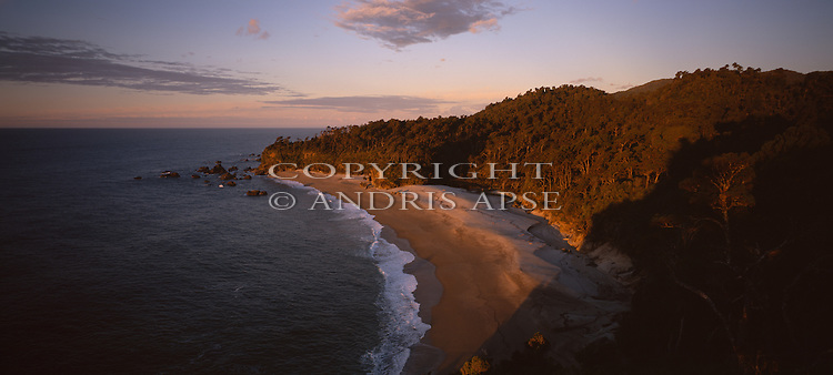 Aerial of beach and forest. Westland Region. New Zealand.