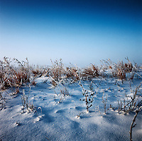 Landscape of snow during a cold morning near Grand Island, Nebraska, Saturday, December 4, 2011. Hunting Duck and White Tail Deer...Photo by Matt Nager