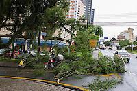 CURITIBA, PR, 05 DE DEZEMBRO 2013 – CLIMA TEMPO/ TEMPESTADE/CURITIBA -  Na tarde dessa quinta-feira(05), uma frente fria chega a capital Paranaense, fazendo diversos estragos na cidade, árvores bloquearam diversas ruas e causando prejuízos alguns donos de automóveis. (FOTO: PAULO LISBOA  / BRAZIL PHOTO PRESS)