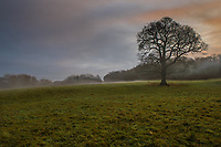 Dawn at Worsbrough Country Park, Barnsley, South Yorkshire on Friday 22nd December 2017.