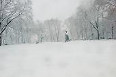Brooklyn, New York<br /> February 03, 2014<br /> <br /> Snow storm in Brooklyn.