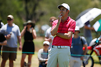 Ashley Chesters (ENG) during the final round of the Nedbank Golf Challenge hosted by Gary Player,  Gary Player country Club, Sun City, Rustenburg, South Africa. 11/11/2018 <br /> Picture: Golffile | Tyrone Winfield<br /> <br /> <br /> All photo usage must carry mandatory copyright credit (&copy; Golffile | Tyrone Winfield)