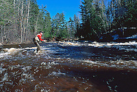 A sport fisherman fly fishing for trout in a stream.