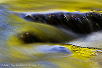 Flowing Water, Great Smoky Mountains National Park, North Carolina