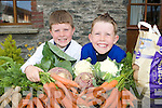Killarney kids Michael and Daniel Horgan are selling home grown vegetables from their home